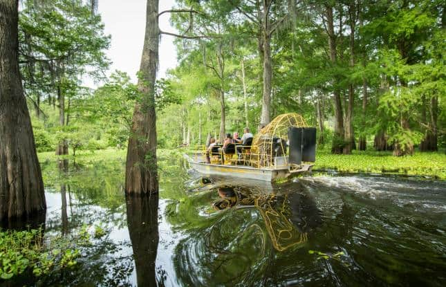 Airboat New Orleans Swamp tours